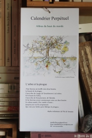 Couverture - Calendrier perpétuel des arbres - couverture l'arbre et la pirogue
