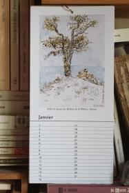 Janvier - Calendrier perpétuel des arbres