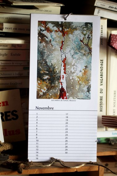 Novembre - - Calendrier perpétuel des arbres