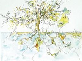 L'arbre du voyage - Dessin à l'encre 17x24 cm avec son cadre blanc 20x30 cm - 130 €