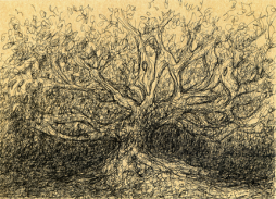 Il pleut des arbres. Encre Petit Format Papier cartonné couleur Kraft10x15 cmEncadré40 €uros