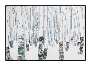 Forêt de bouleau - Isabelle Flourac