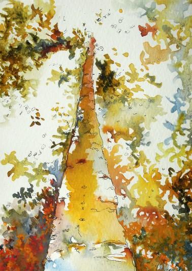 Jungle Orchestra - Isabelle Flourac