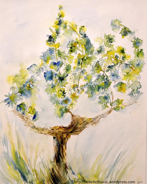 Cep de Vignes au printemps, dessin à l'encre de couleur