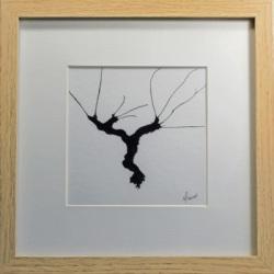 Illustration à l'encre de Chine d'un cep de vigne, Isabelle Flourac, cep à l'allure de danseur ou dechef d'orchestre